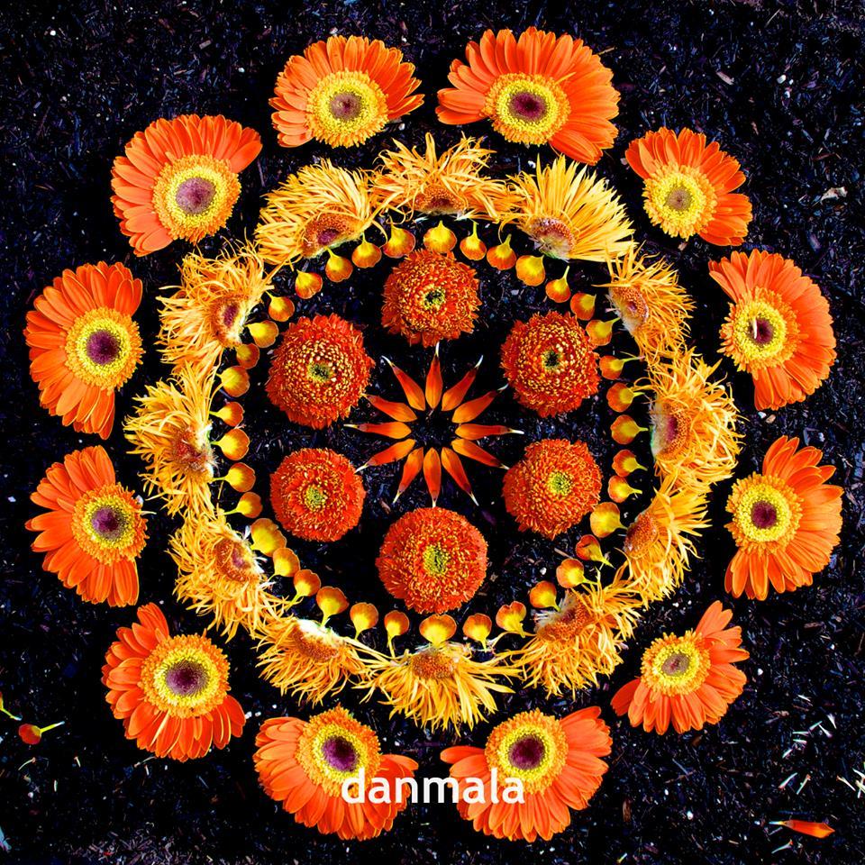 As mandalas de flores de kathy klein kathy klein s flower mandalas kiki felipe mind body - Mandala nature ...