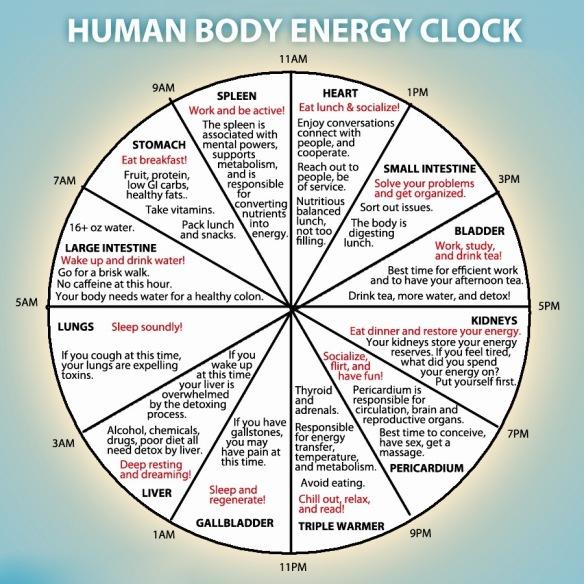 The Human Body Energy Clock | Kiki Felipe - Mind Body Food & Soul